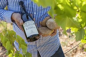vigne-vin-flaugergues
